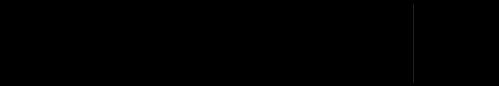 MaximStore